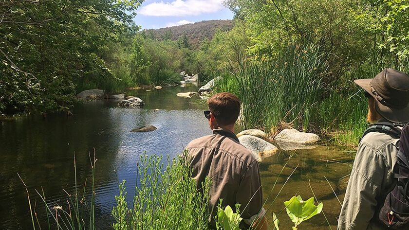 The Wildlands Conservancy is in escrow to purchase nearly 1,400 acres along the Santa Margarita Rive