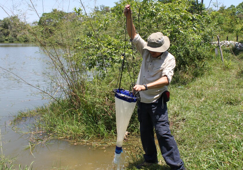 Nelson Javier Aranguren-Riaño from La Universidad Pedagógica y Tecnológica de Colombia and researchers UC San Diego captured a variety of ecological data, including oxygen levels, water chemistry and audio soundscapes, to the study of impact of Pablo Escobar's hippos.
