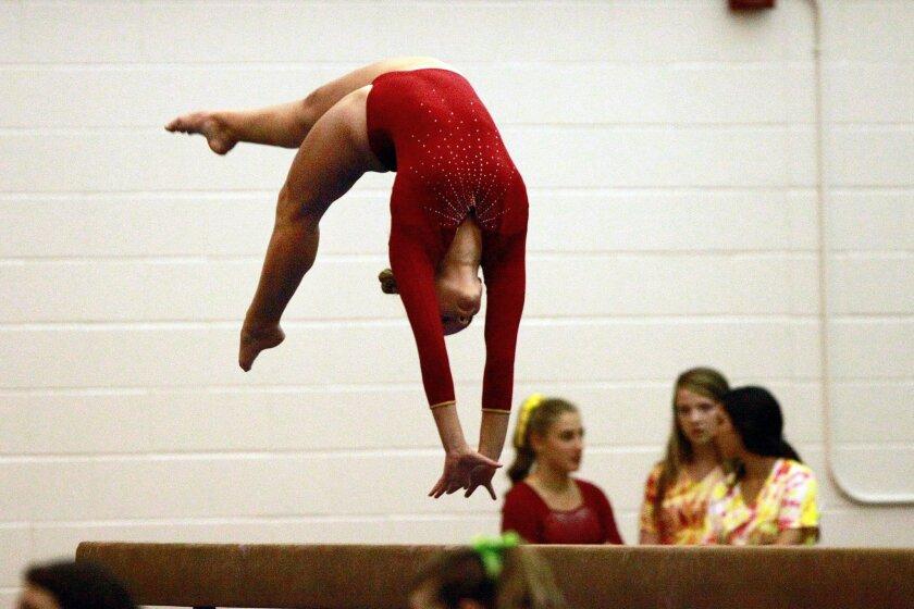 Carter Clatterbuck returns for Mt. Carmel's always-strong gymnastics program.