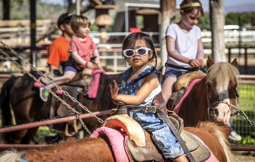 Horseback ridding at Underwood Family Farms in Moorpark, CA.