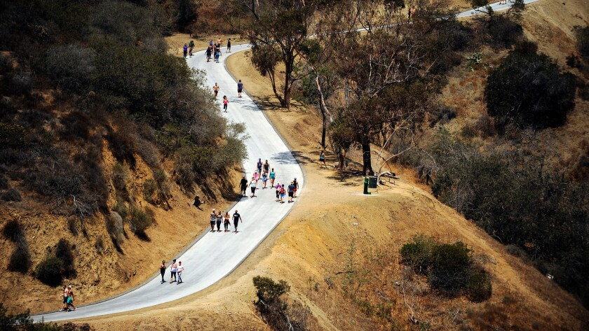 Visitors take advantage of the reopening of Runyon Canyon on Aug. 6.