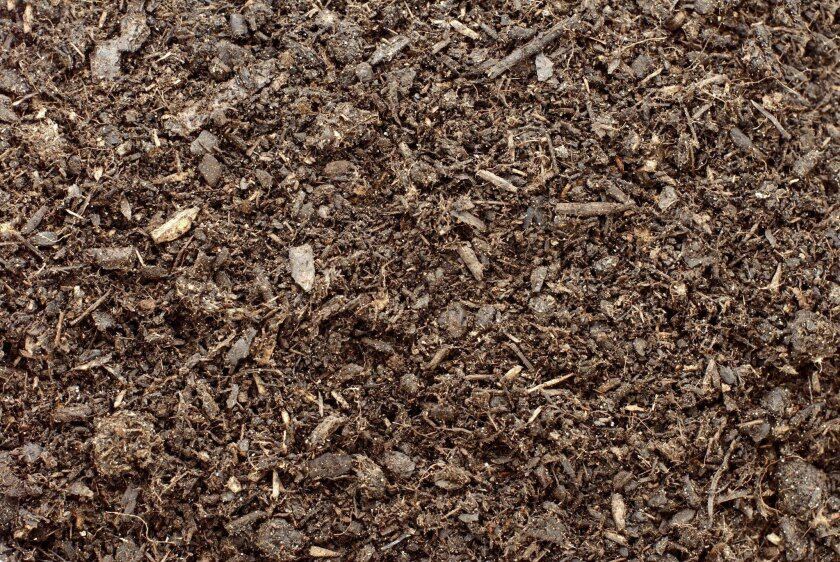 Compost, soil or dirt background  User Upload Caption: Mulch for garden