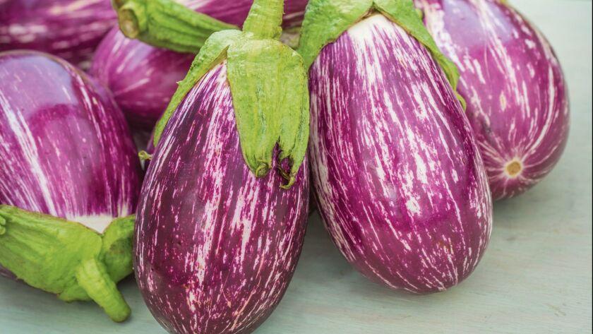 Eggplant 'Listanda De Gandia'