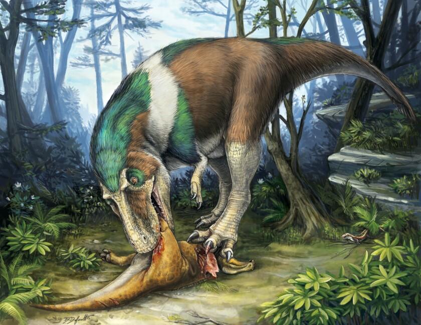 Gorgosaurus eating Corythosaurus