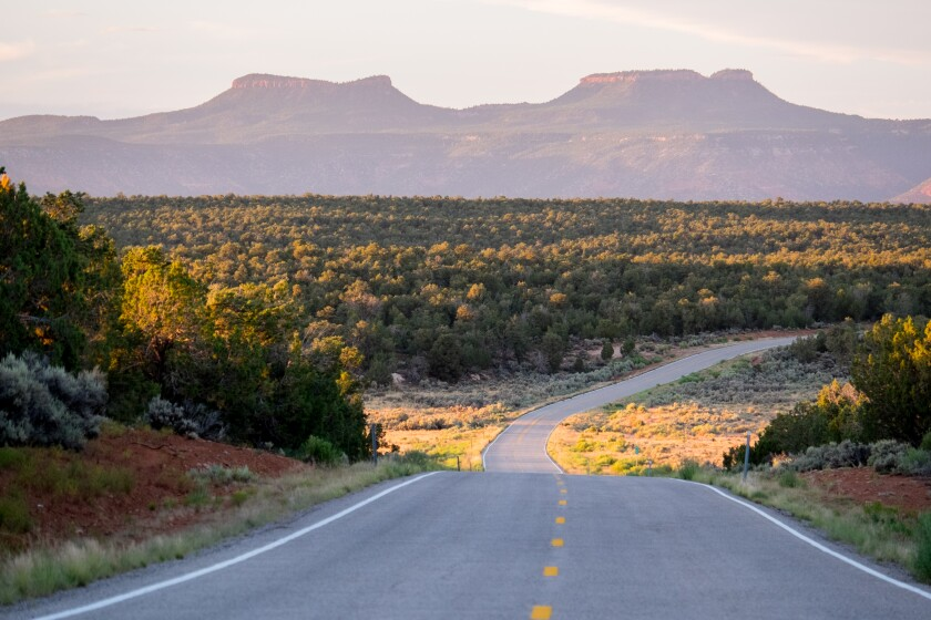 Road with Bears Ears buttes in the distance