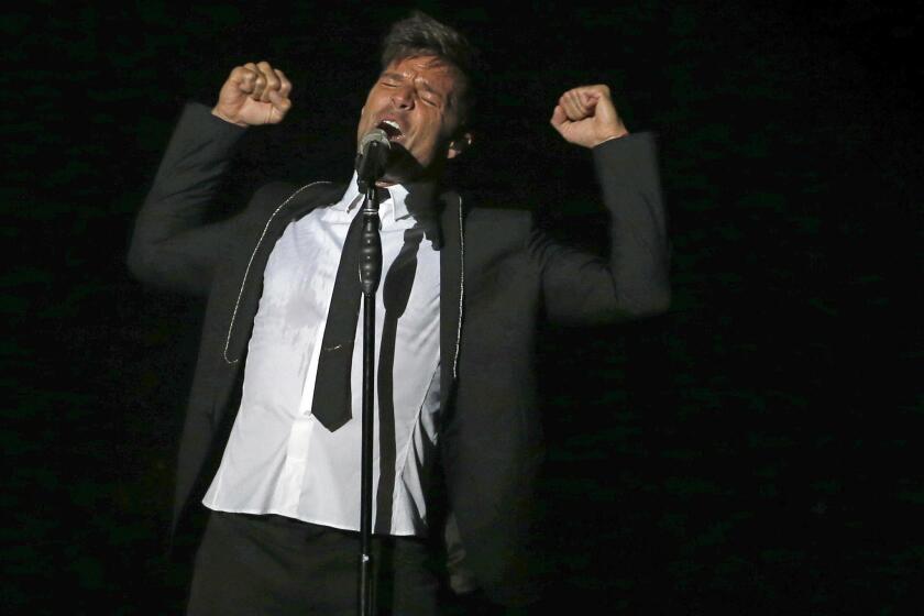 """El músico y cantante puertorriqueño, Ricky Martin, durante el concierto que ha ofrecido esta noche en el Palacio Vistalegre de Madrid, incluido en su gira """"One World Tour"""". EFE / Kiko Huesca."""
