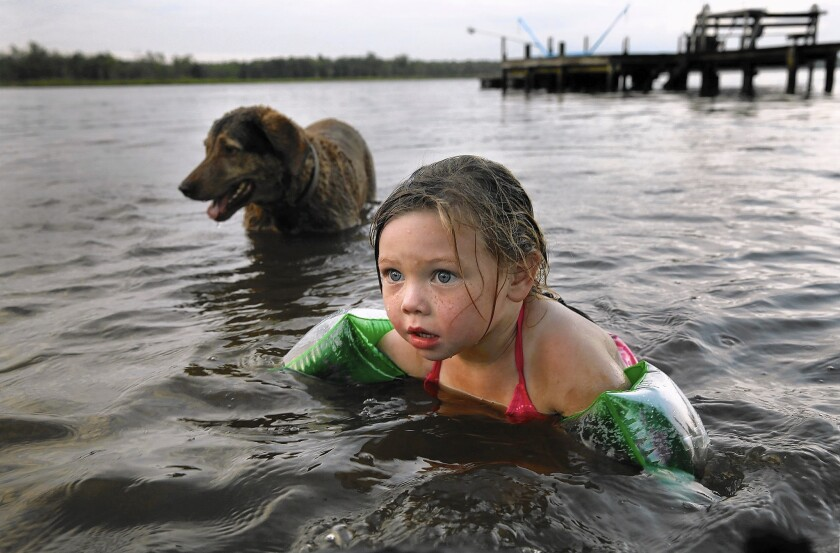 Mikayla Deacy, 4, swims with her dog Dakota in the Pamunkey River. As a member of the tribe, Mikayla will be eligible for scholarships and other benefits now that the Pamunkey have received federal recognition.