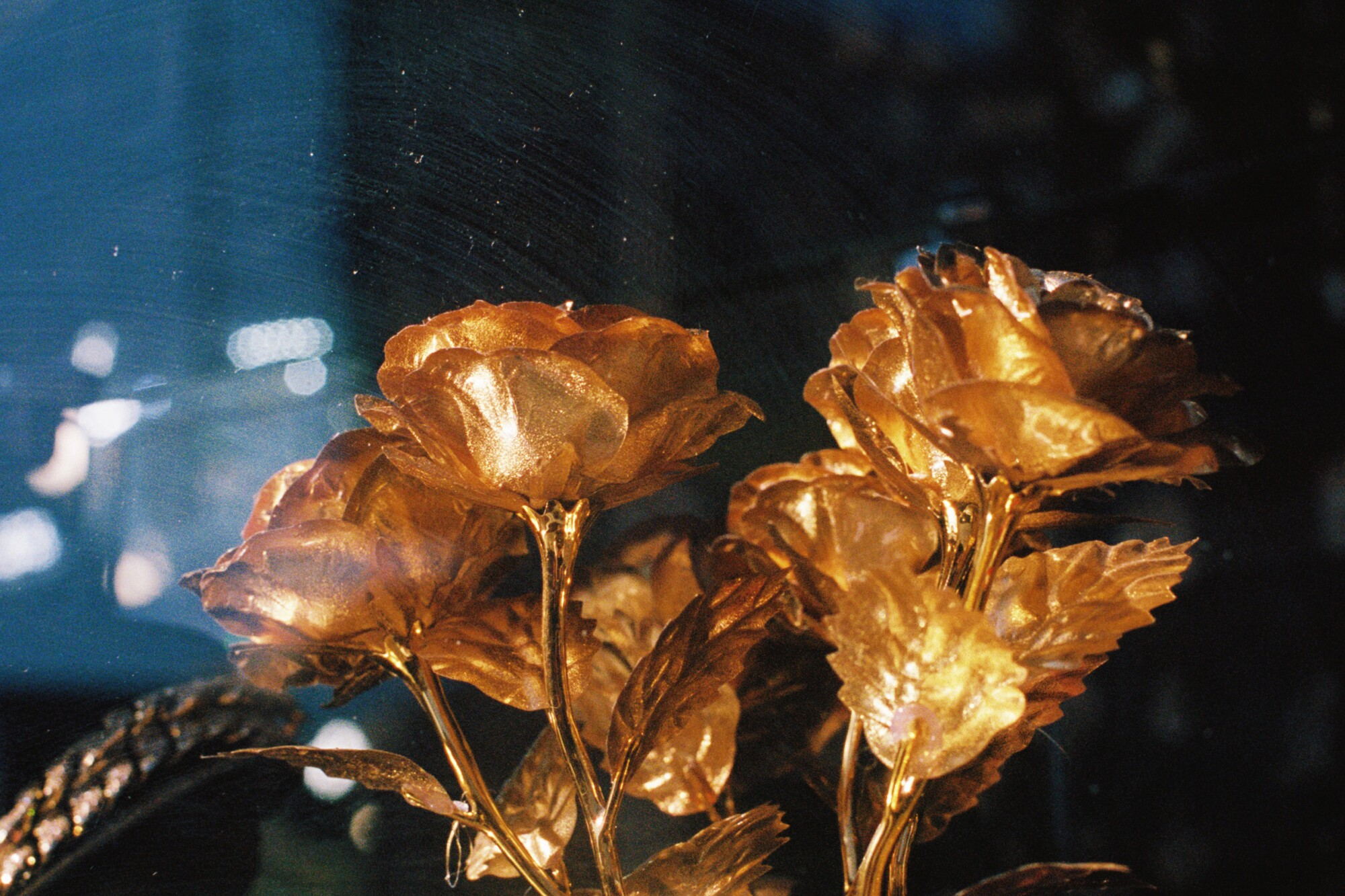 Clifford Prince King's photograph of gold-dipped flowers and a gold chain