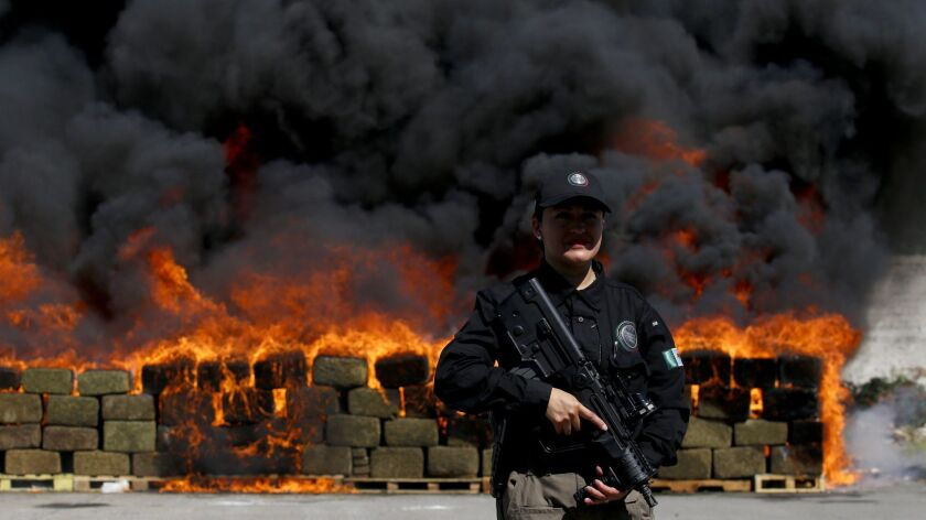 MEXICO-DRUGS-INCINERATION