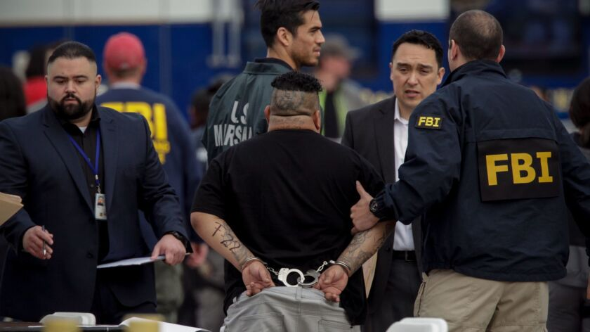 Nevada authorities allege a Los Angeles detective interfered with their hunt for an MS-13 gang member wanted for murder in 2010. An LAPD investigation cleared Det. Frank Flores, but the claims recently resurfaced in two federal drug cases. This photo shows a recent MS-13 arrest.