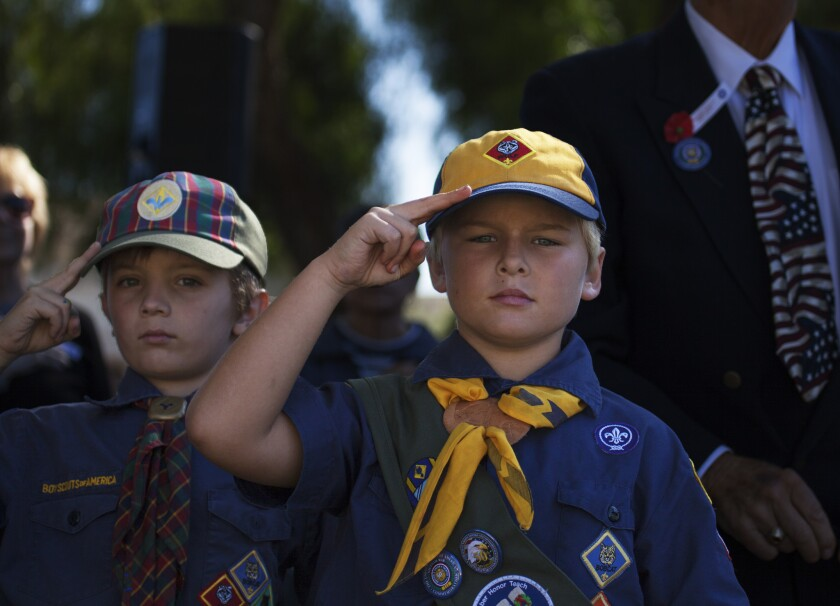 Boy Scouts salute at the 2015 Veteran's Day ceremony at Helen Bougher Memorial Park in San Marcos.