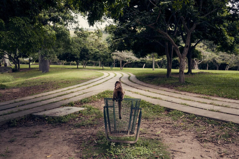 Caricuao zoo