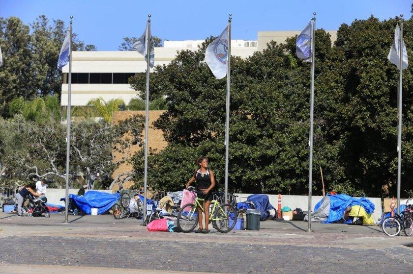 """La acción de los supervisores llegó horas antes de que los concejales del ayuntamiento de Santa Ana declararan la indigencia en esa zona como una """"crisis pública y de seguridad""""."""