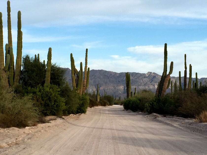 The road to the Playa Frambes Lighthouse Resort.