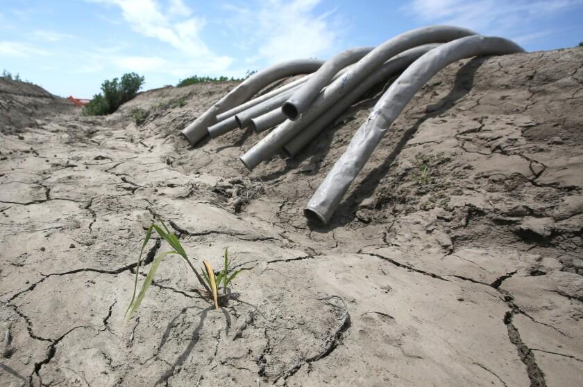 APphoto_California Drought Water Cuts