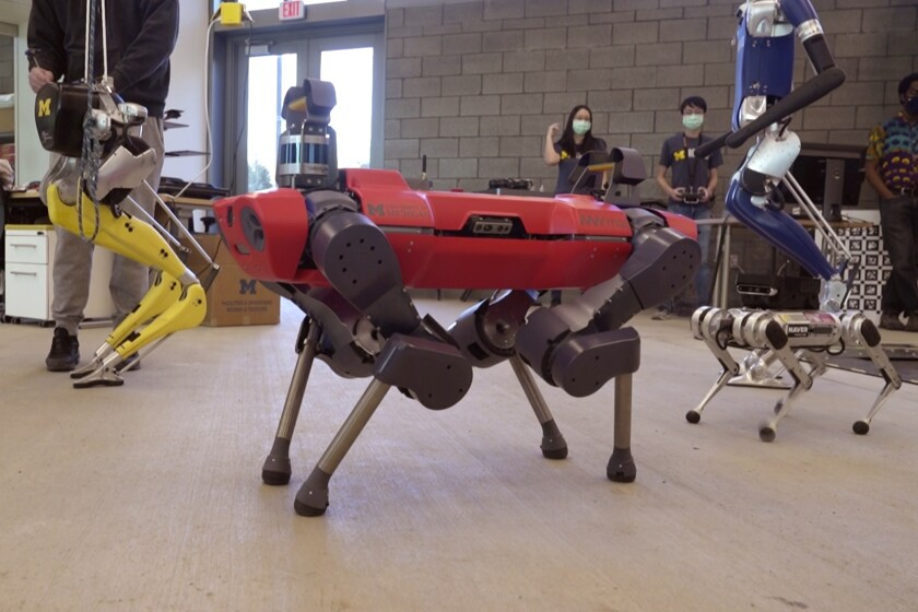 In a frame grab from video, robots walk across the floor of the University of Michigan's Ford Motor Co. Robotics Building, March 12, 2021 in Ann Arbor, Mich. The four-story, $75 million, 134,000-square-foot complex has three floors that house classrooms and research labs for robots that fly, walk, roll and augment the human body. (AP Photo/Carlos Osorio)