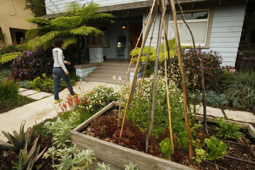 Julie Burleigh has a created a sanctuary with the gardens surrounding the West Adams home she shares with her partner, photographer Cathie Opie and their son.