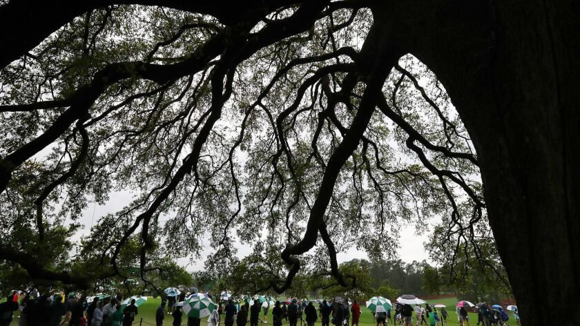 April 9, 2019 Augusta: Golf patrons line the first fairway at the big oak tree behind the clubhouse