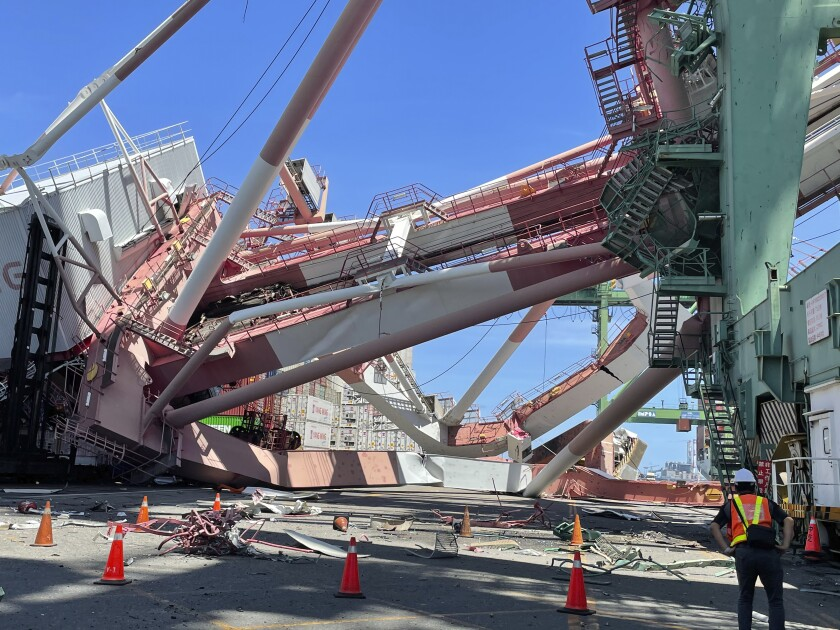 Port workers view the scene of a massive container gantry crane that toppled over Thursday, June 3, 2021, in the port of Khaohsiung, southern Taiwan. The crane fell over after a cargo ship knocked into it Thursday morning, sending it crashing to the ground in the port. (Taiwan International Ports Corporation Ltd. via AP)