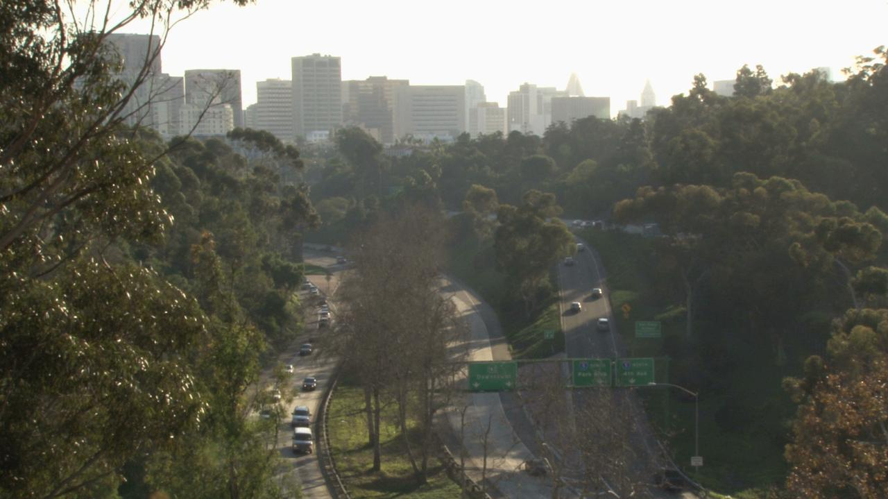 Action Alert Save Urban Forests Now American Forests >> San Diego Adopts Urban Forestry Plan To Boost Tree Canopy Slow