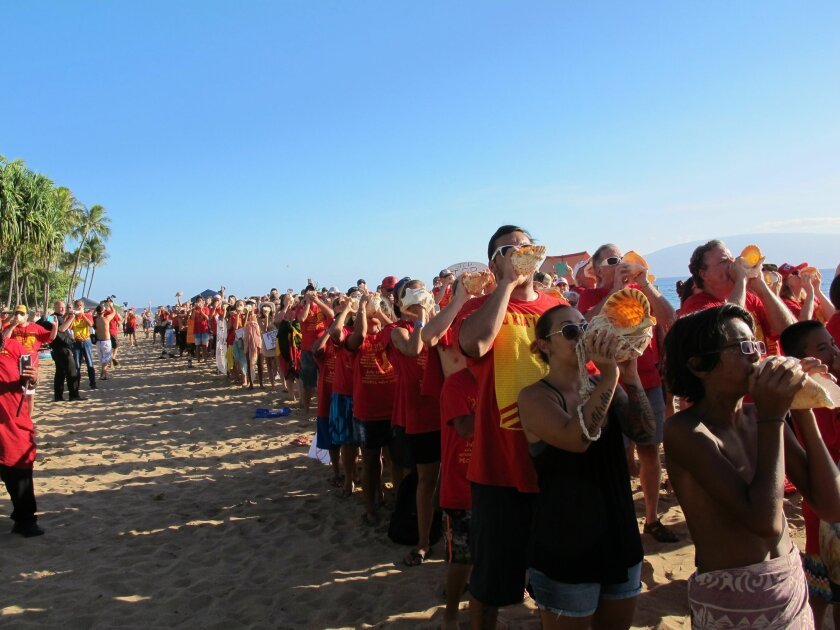 Hundreds of protestors blowing conch shells line Kaanapali Beach in Lahaina, Hawaii, Wednesday, July 29, 2015, to protest the Trans-Pacific Partnership trade agreement. Ministers from 12 Pacific Rim nations are gathering at the Westin Maui resort on the beach to negotiate a new trade pact. (AP Photo/Audrey McAvoy)
