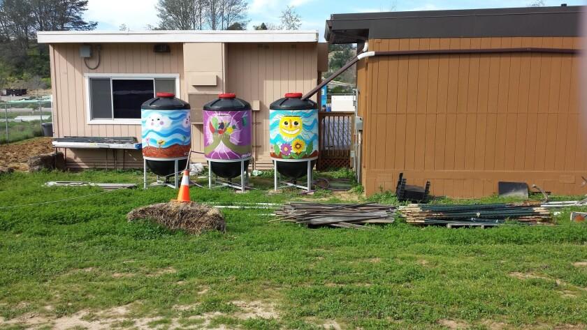 Three rain barrels at the Farm Lab.