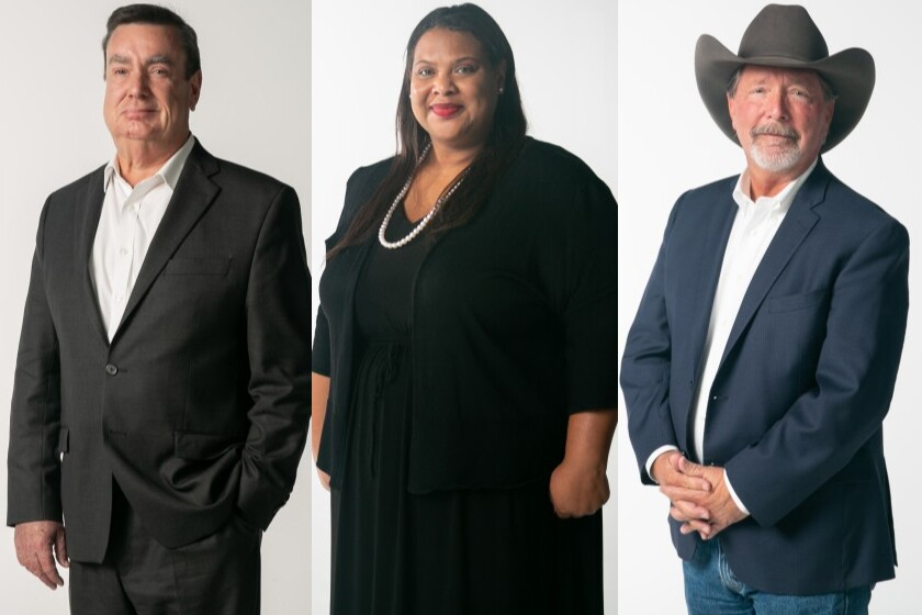 San Diego County Board of Supervisor District 2 - 2020 primary candidates