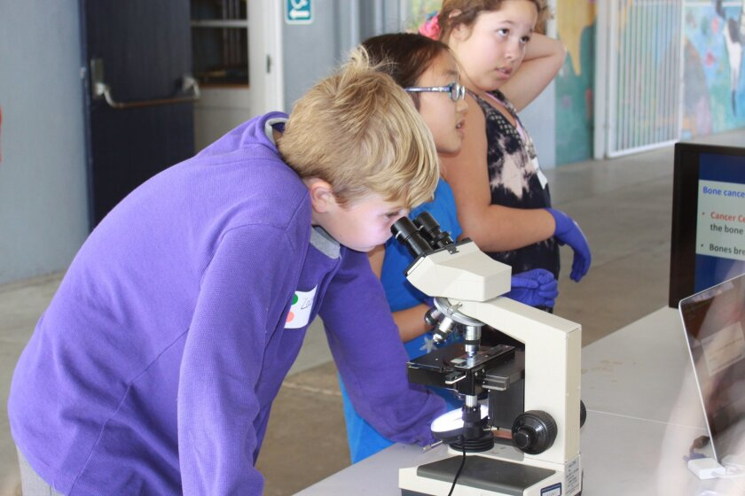 Zachary Foster looks at bone cells under a microscope.
