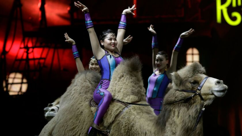 Ringling Bros. and Barnum & Bailey acrobats ride camels during a performance Saturday in Orlando.