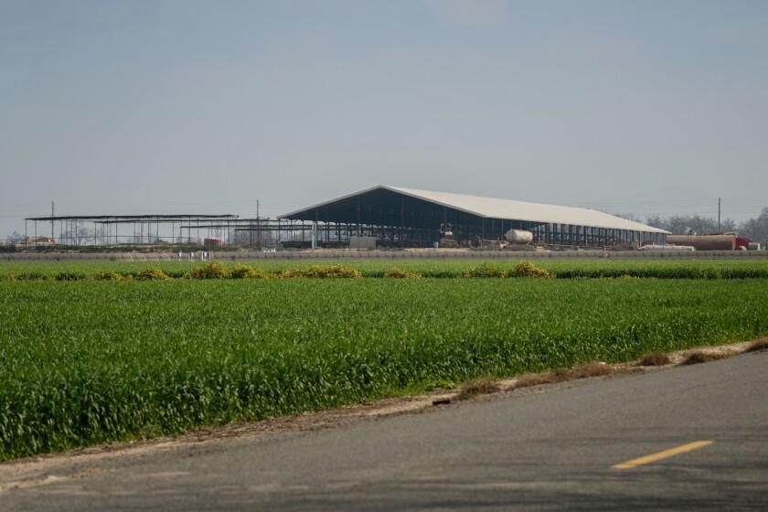 Devin Nunes' farm in Tulare.
