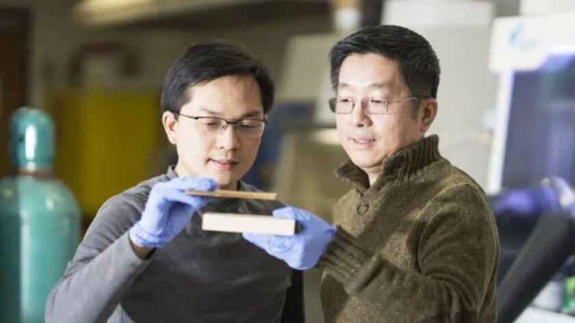 """Es la """"supermadera"""", desarrollada por ingenieros de la Universidad de Maryland, en Estados Unidos, que hallaron una forma de tratar la madera que la vuelve tan fuerte como el acero."""