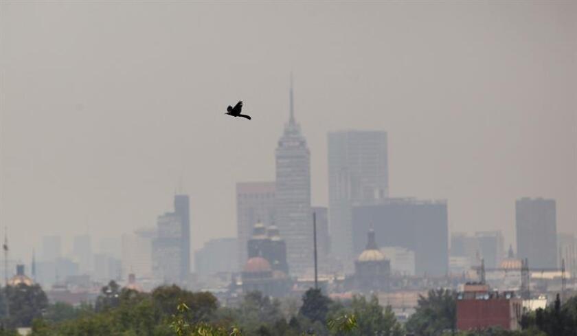Las autoridades mexicanas activaron hoy la primera fase de emergencia ambiental en la Zona Metropolitana del Valle de México, debido a la elevada concentración de partículas contaminantes y las condiciones meteorológicas que perjudican su dispersión. EFE/ARCHIVO