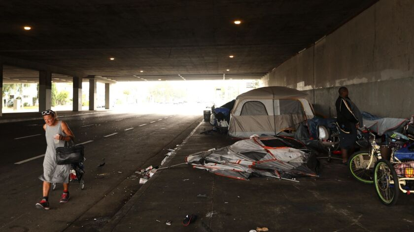 A homeless encampment beneath the 405 Freeway.
