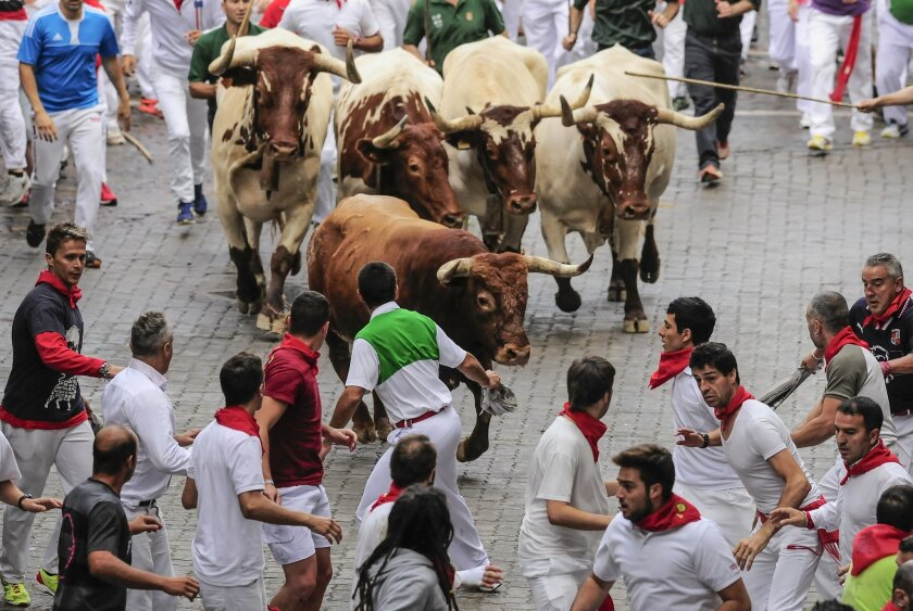 Runners run ahead of a ''Miura'' fighting bull which tossed some runners during the running of the bulls, at the San Fermin festival, in Pamplona, Spain, Monday, July 14, 2014. Revelers from around the world arrive to Pamplona every year to take part in some of the eight days of the running of the bulls. (AP Photo/Alvaro Barrientos)