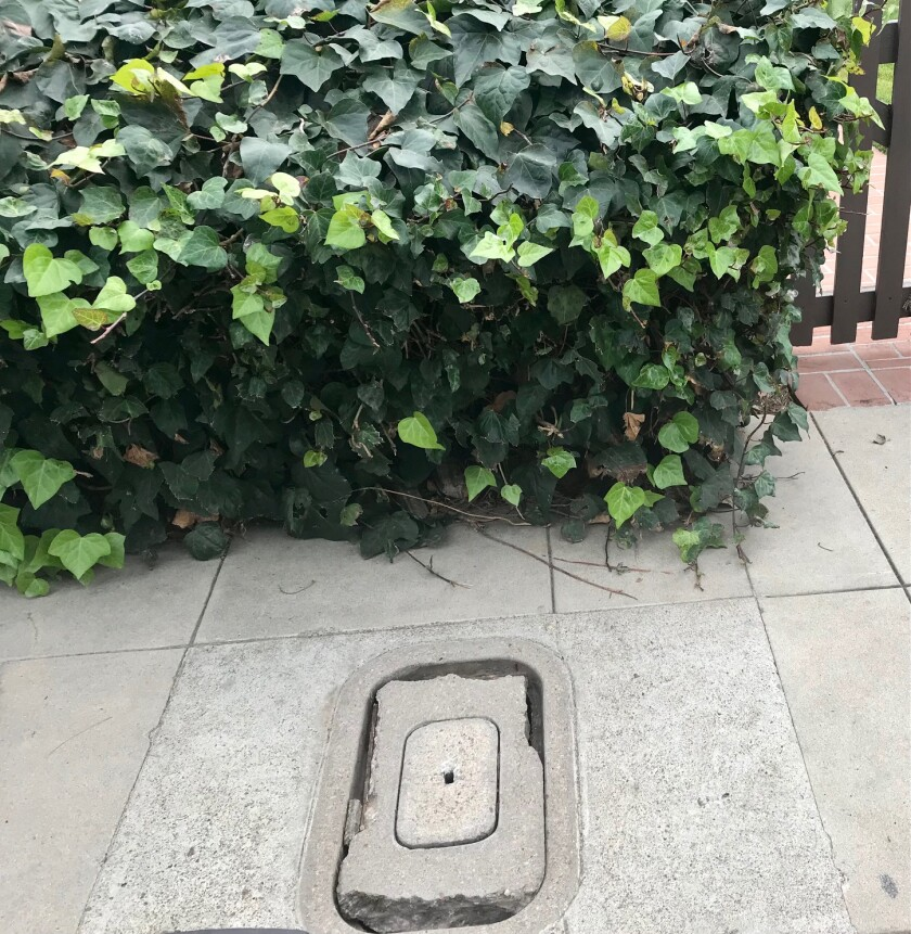 The crumbling water meter cover outside Inga's front gate was a broken ankle waiting to happen for people who walked on it.