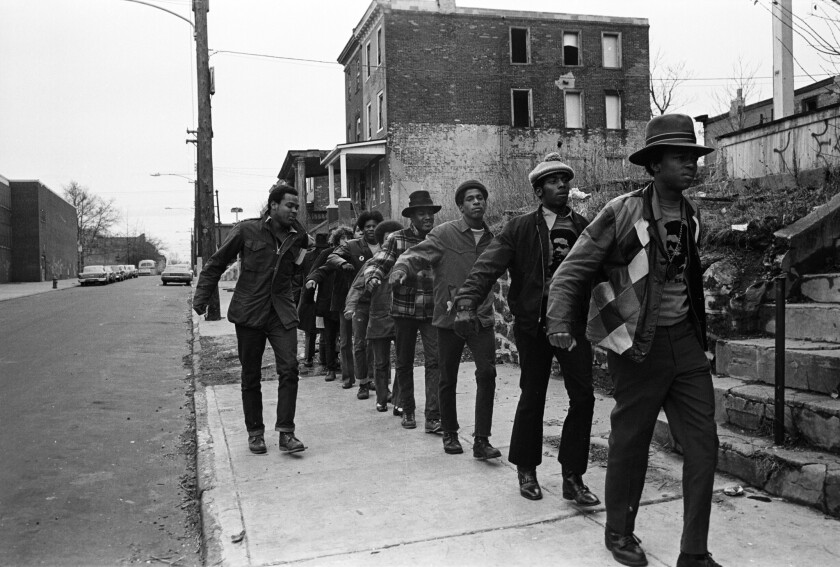 'The Black Panthers: Vanguard of the Revolution'
