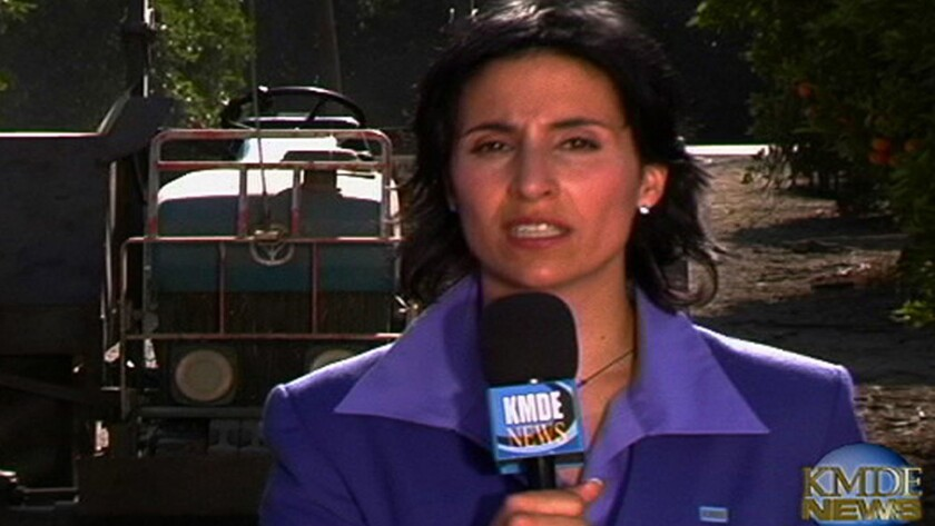 """Yareli Arizmendi plays a TV reporter in the 2014 satire """"A Day Without a Mexican."""""""