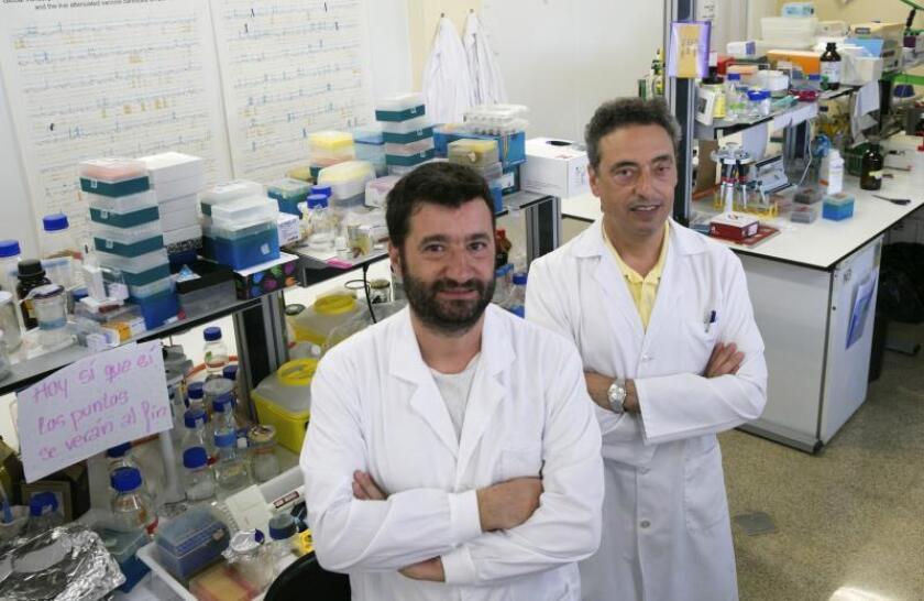 """Los investigadores del Laboratorio de Genética de Micobacterias de la Universidad de Zaragoza, Nacho Aguiló (i), Carlos Martín (d), y su equipo, han logrado establecer el mecanismo a través del cuál la vacuna contra la tuberculosis que están desarrollando """"funciona"""" y por qué lo hace mejor que la actual y centenaria BCG, que es la que se utiliza desde 1921. EFE/Javier Cebollada/Archivo"""