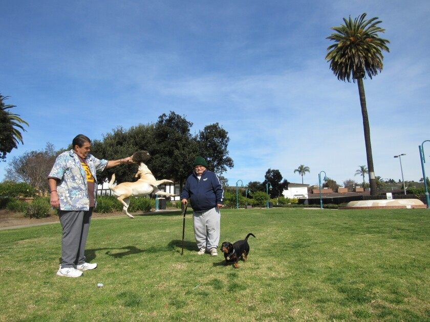 Lemon Grove residents Stanley A. Monacelli, with his dog, Lucky (left), and Steven Floyd and his dog, Molly B, enjoy the use of Civic Center Park on a recent afternoon. The park will be renamed Treganza Heritage Park after a pioneering Lemon Grove family.