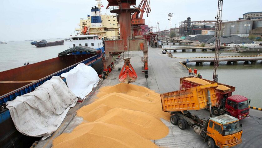 Workers load imported soybeans onto trucks at a port in China