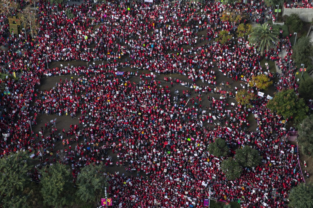 An aerial view of a crowd of demonstrators.