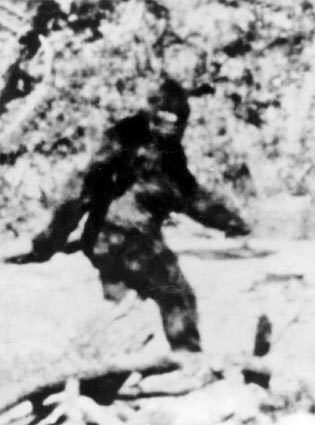The Bigfoot legend This unretouched image, purportedly of Bigfoot, was taken from several seconds of film shot in Del Norte County, Calif., in late 1967. It is from a film by Roger Patterson and Bob Gimlin, who claim they captured Bigfoot in their footage.