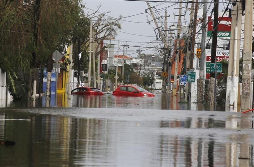 El representante Ángel Peña Ramírez radicó una medida que busca obligar a todos los concesionarios de autos a informarles a los clientes que adquirieron vehículos previo al paso del huracán María que se inundó por las fuertes lluvias que trajo el ciclón. EFE/ARCHIVO