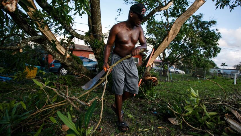 Jerry Thomas works to clear out a fallen mango tree outside his house after the winds caused by Hurr