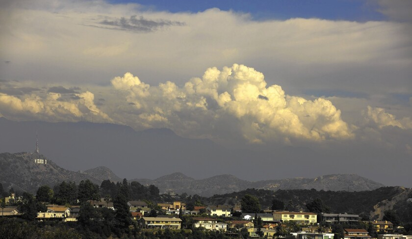 The view from a Laurel Canyon hilltop that local residents hope to buy to save it from possible development.