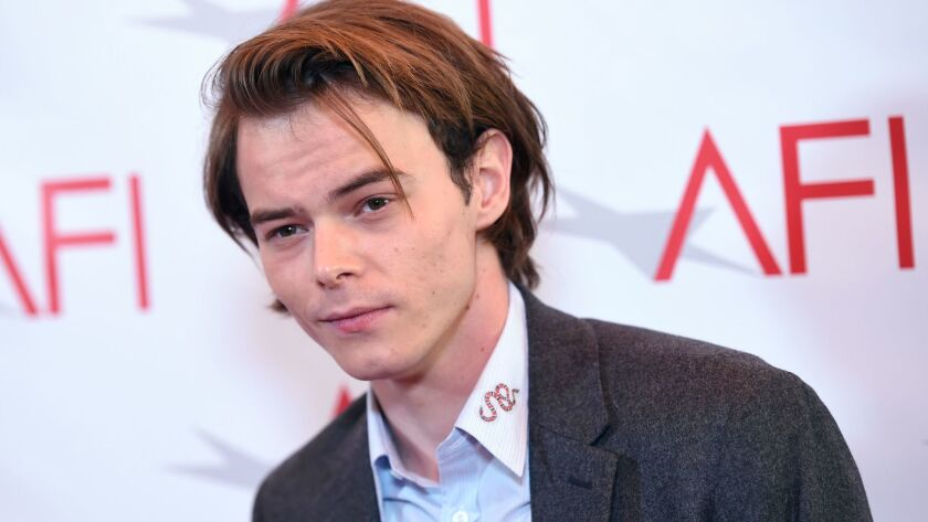 A customs canine sniffed Charlie Heaton's luggage when he arrived at Los Angeles International Airport and police found a small amount of cocaine, an official said.