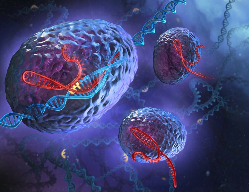 Artist's depiction of the CRISPR system in action. The scientific tool was found by studying how bacteria fight off bacterial viruses.