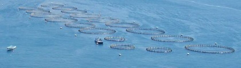 The Hubbs-SeaWorld Research Institute has experimented with aquaculture nets in the waters off Baja California.