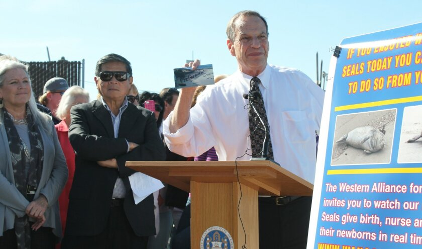 During a press conference at Children's Pool Jan. 31, Mayor Bob Filner displayed a photo of people standing behind the newly lengthened seal rope, which he said proves humans and seals can share the beach respectfully, and at a safe distance. Pat Sherman photos