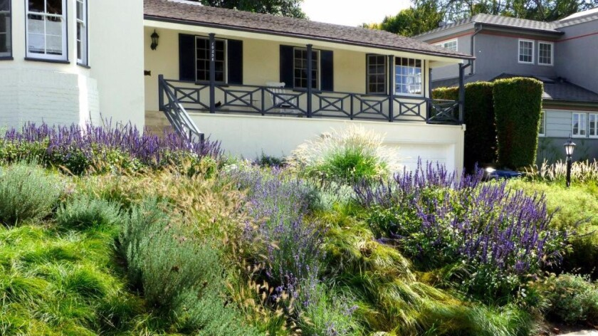 Cheviot Hills homeowners removed their front lawn and replaced it with a no-mow meadow that requires little water or maintenance and provides visual interest year-round.